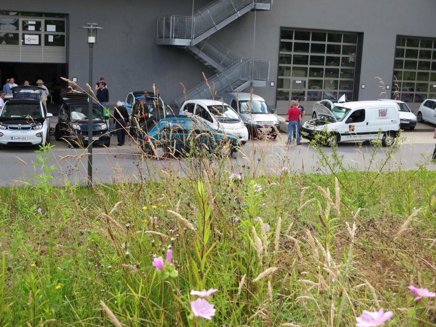 Laden hinter Wildblumen: Westfälische Hochschule, Gelsenkirchen